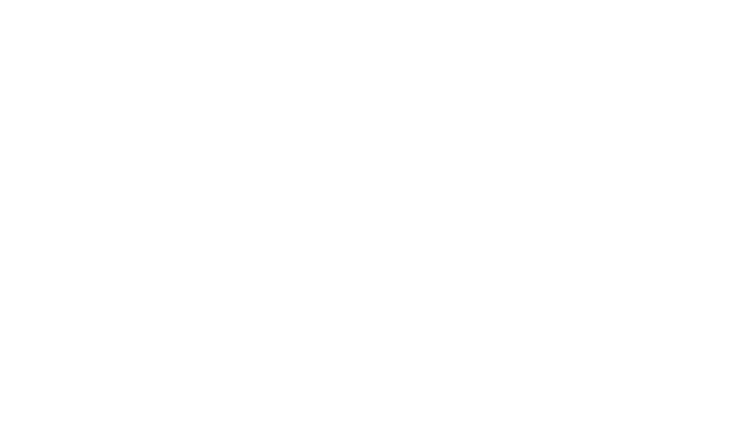 american-academy